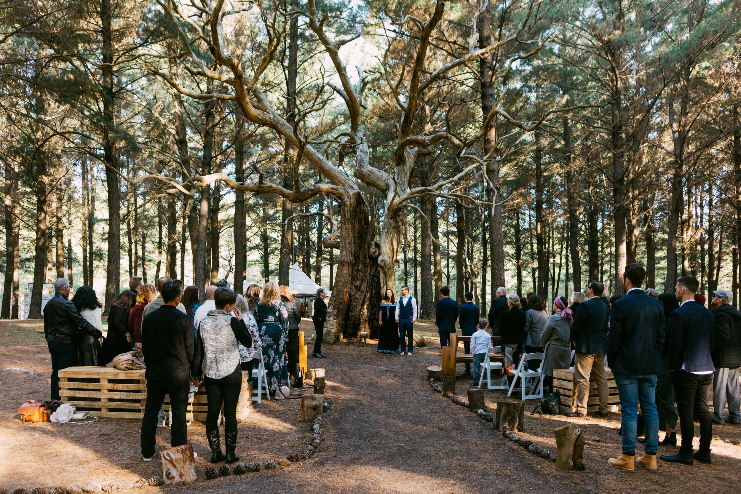 Bohemian Forest Wedding Adelaide Kuitpo 042.jpg