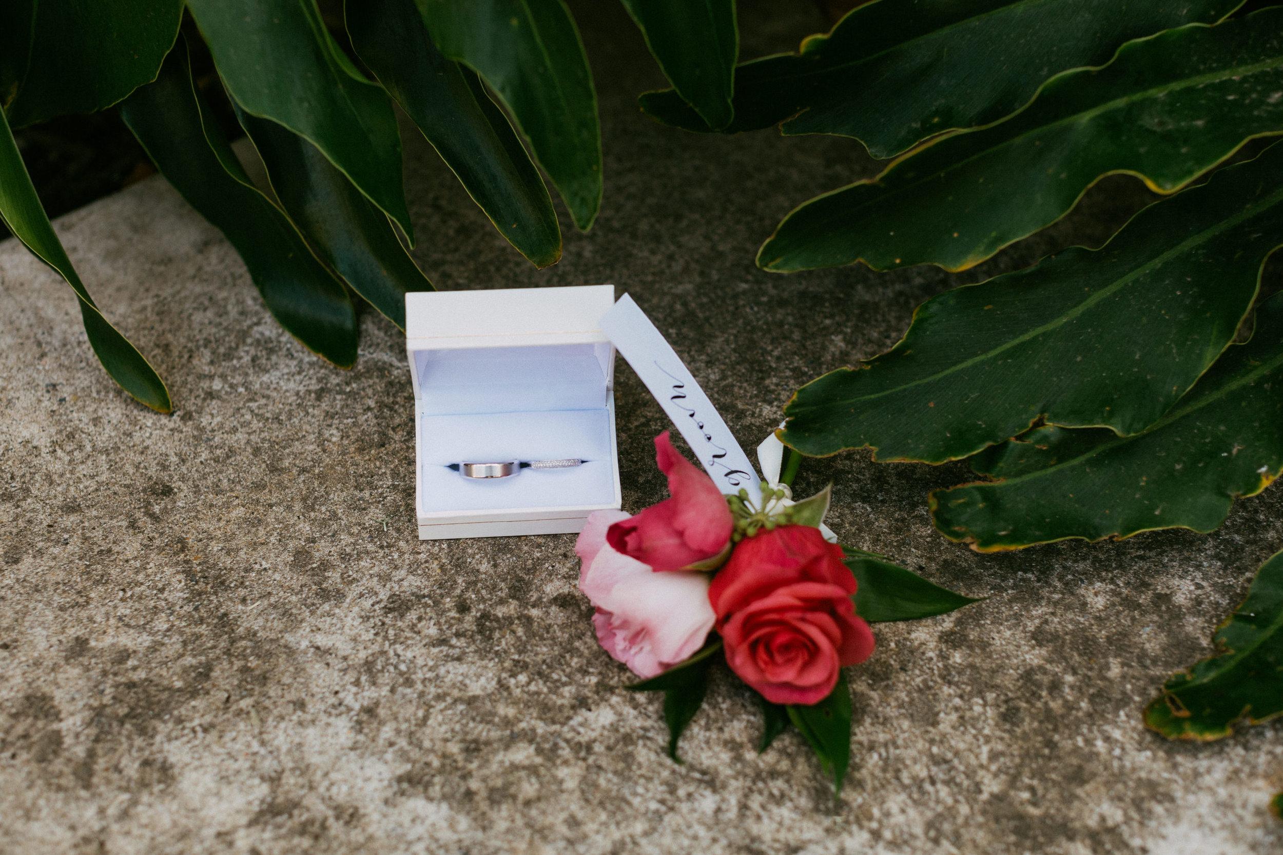 Adelaide City Fringe Garden Unearthly Delight Wedding 002.jpg