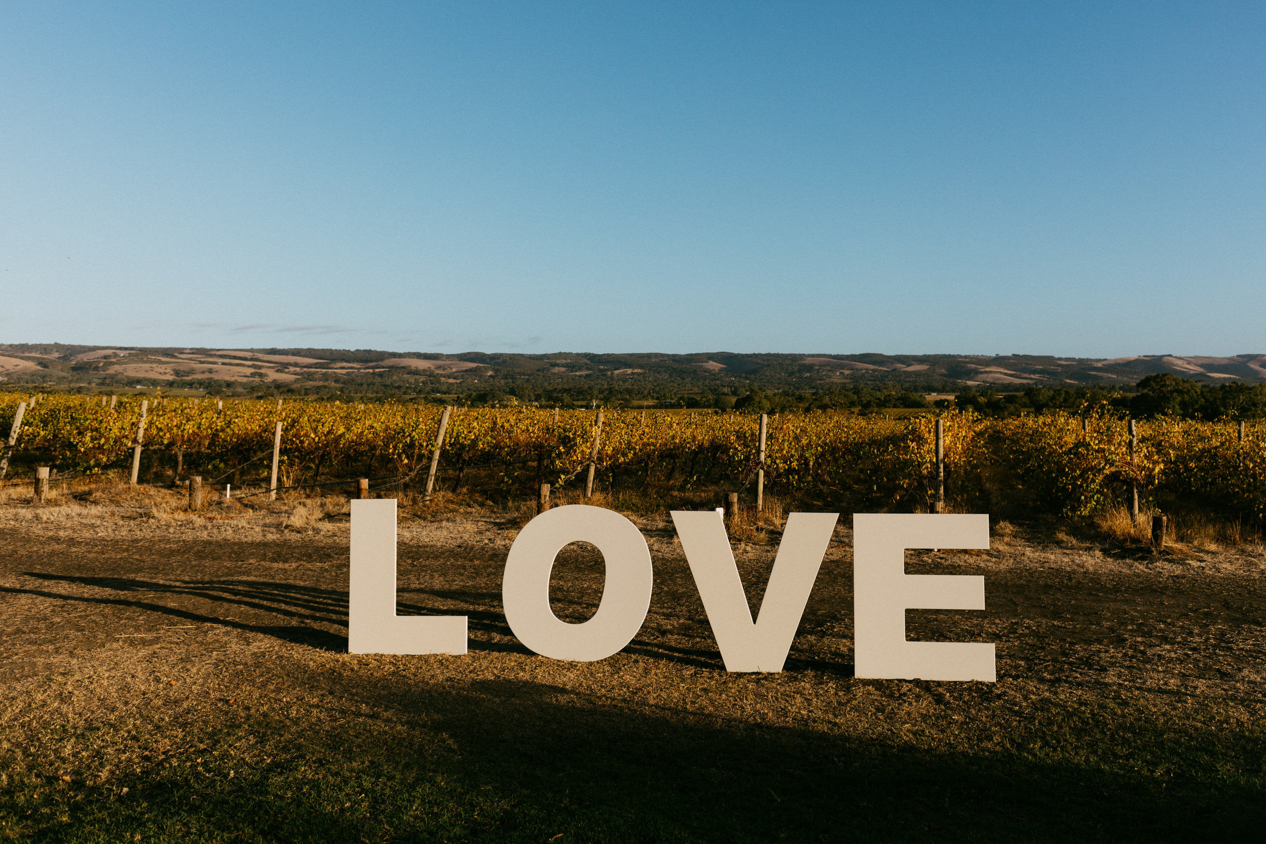 Ekhidna Wines McLaren Vale Wedding 101.jpg