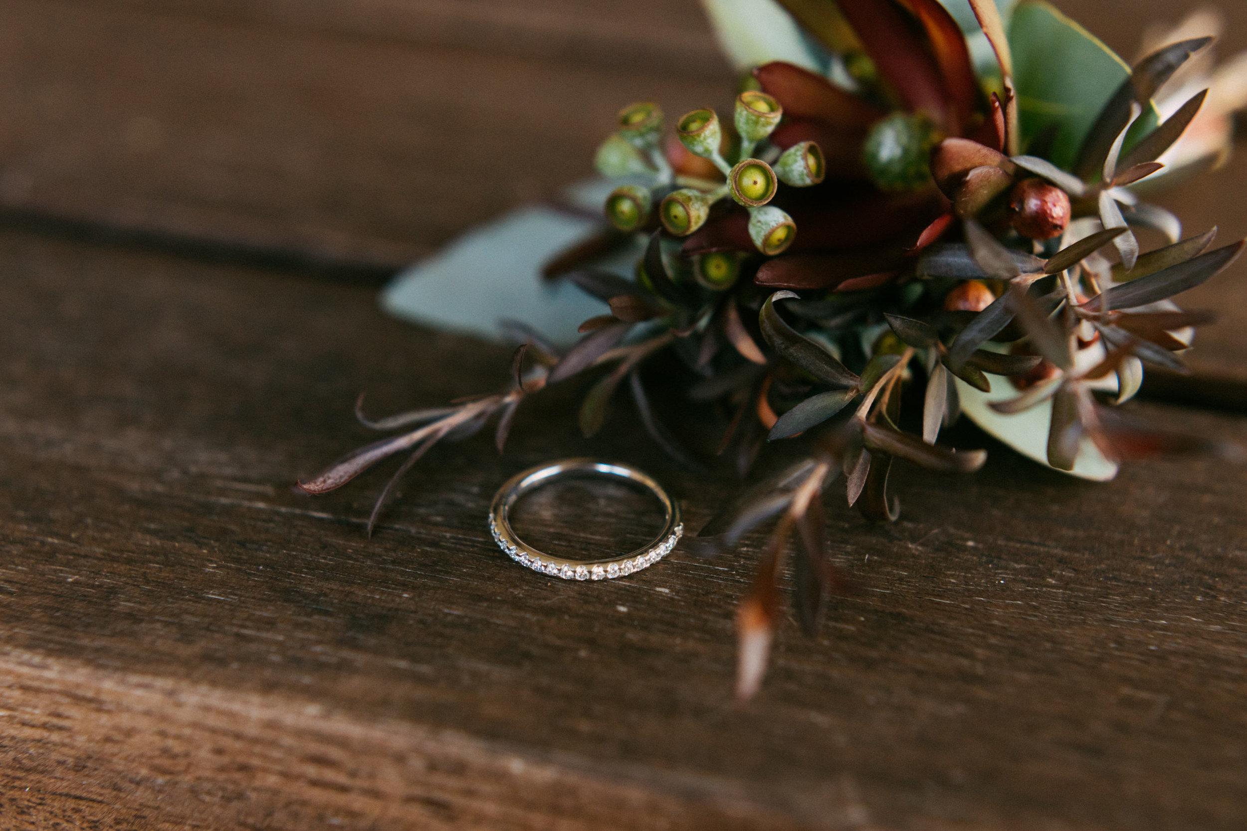 Adelaide Winter Weddings Ayers House 001.JPG