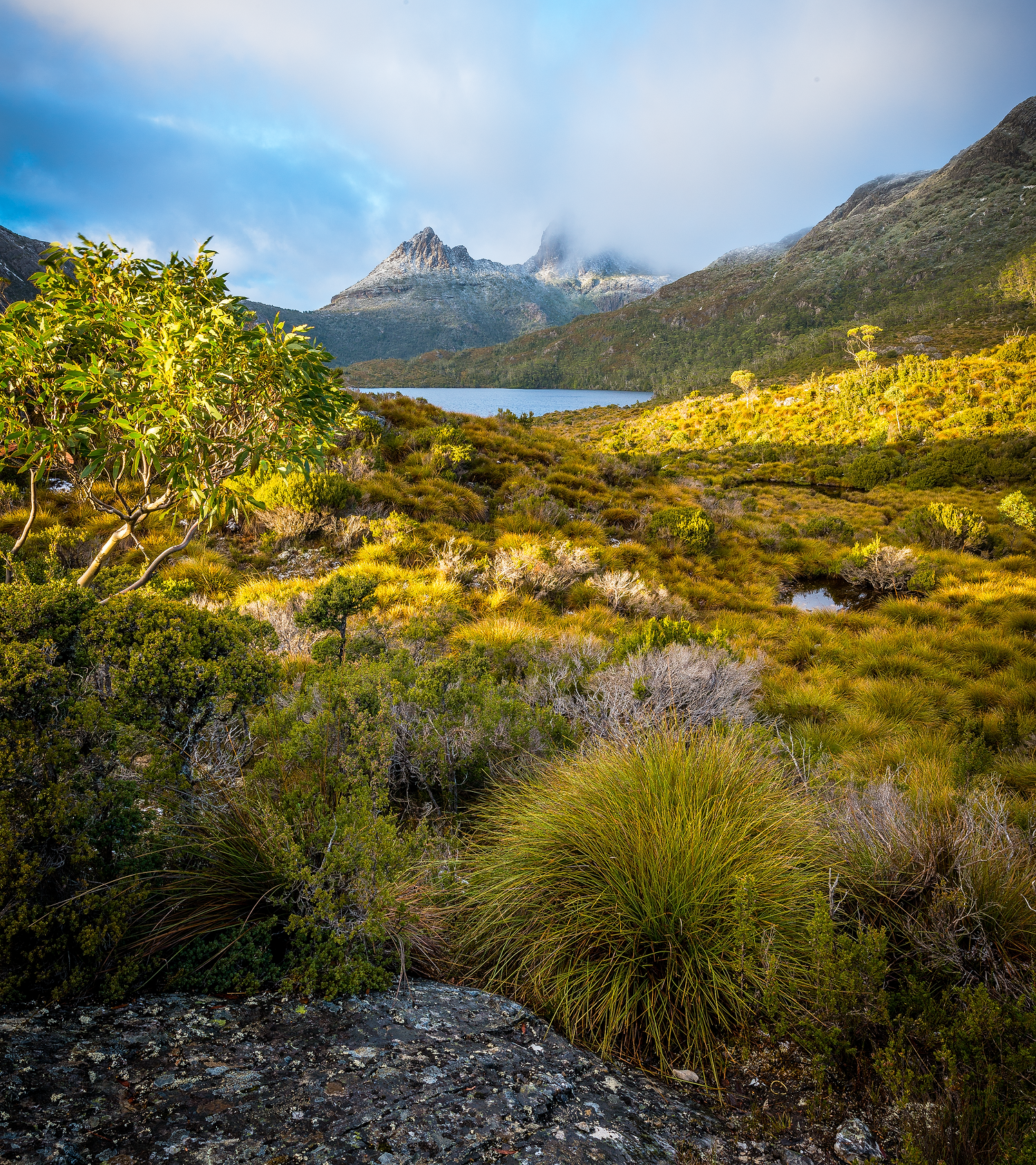 Cradle Mountain Sunrise Portrait - Tasmania - Wilkography