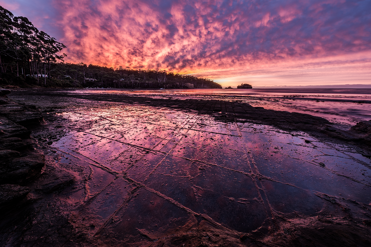 Tessellated Sunrise - Tesselated Pavement - Tasmanian Peninsula - Wilkography