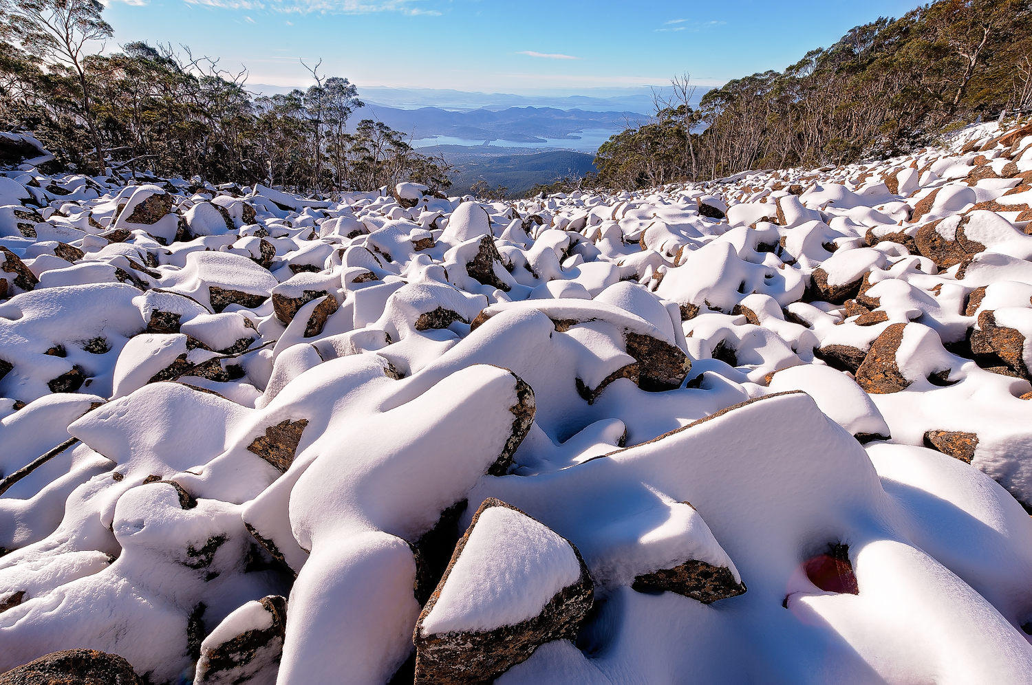 Snow Blanket - Mt Wellington / kunanyi - Tasmania - Wilkography