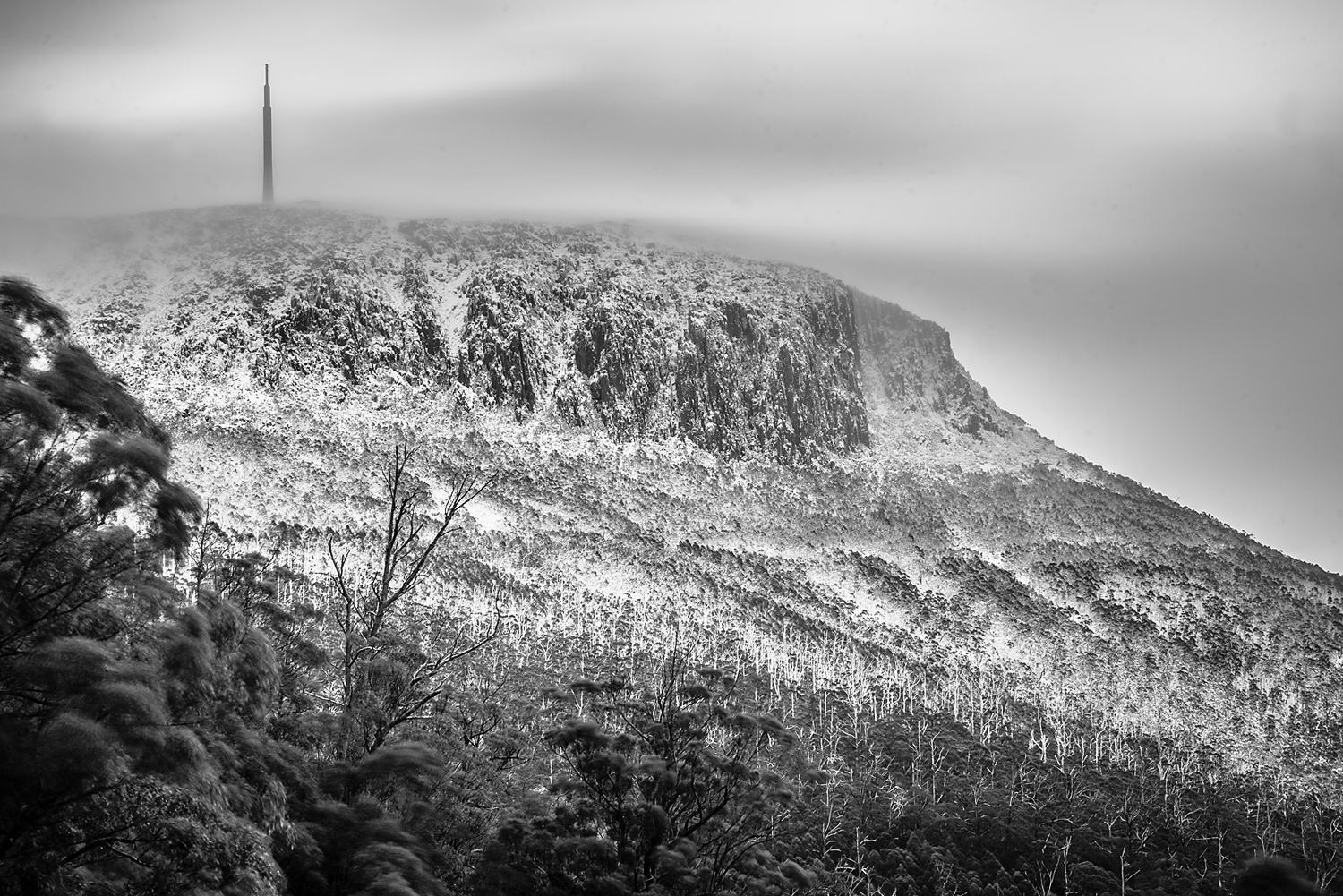 Mt Wellington In Winter