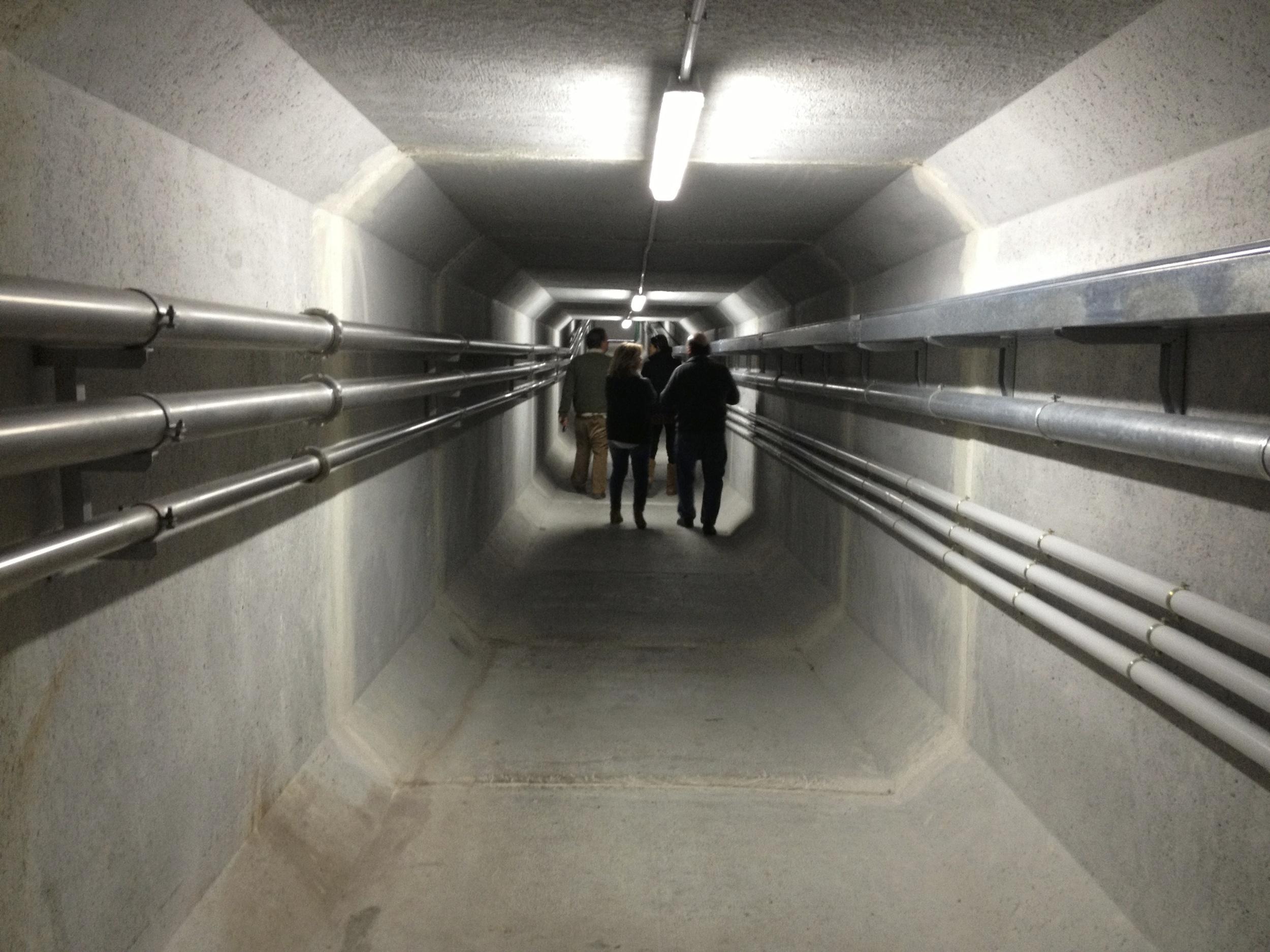 Túnel de Bodega. Cooperativa Nª Sª de Guadalupe