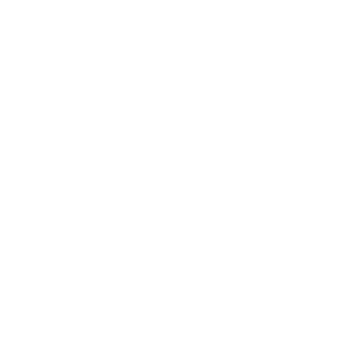 THE CROSSING CHURCH_LOGO_BRAND ICON_WHITE.png