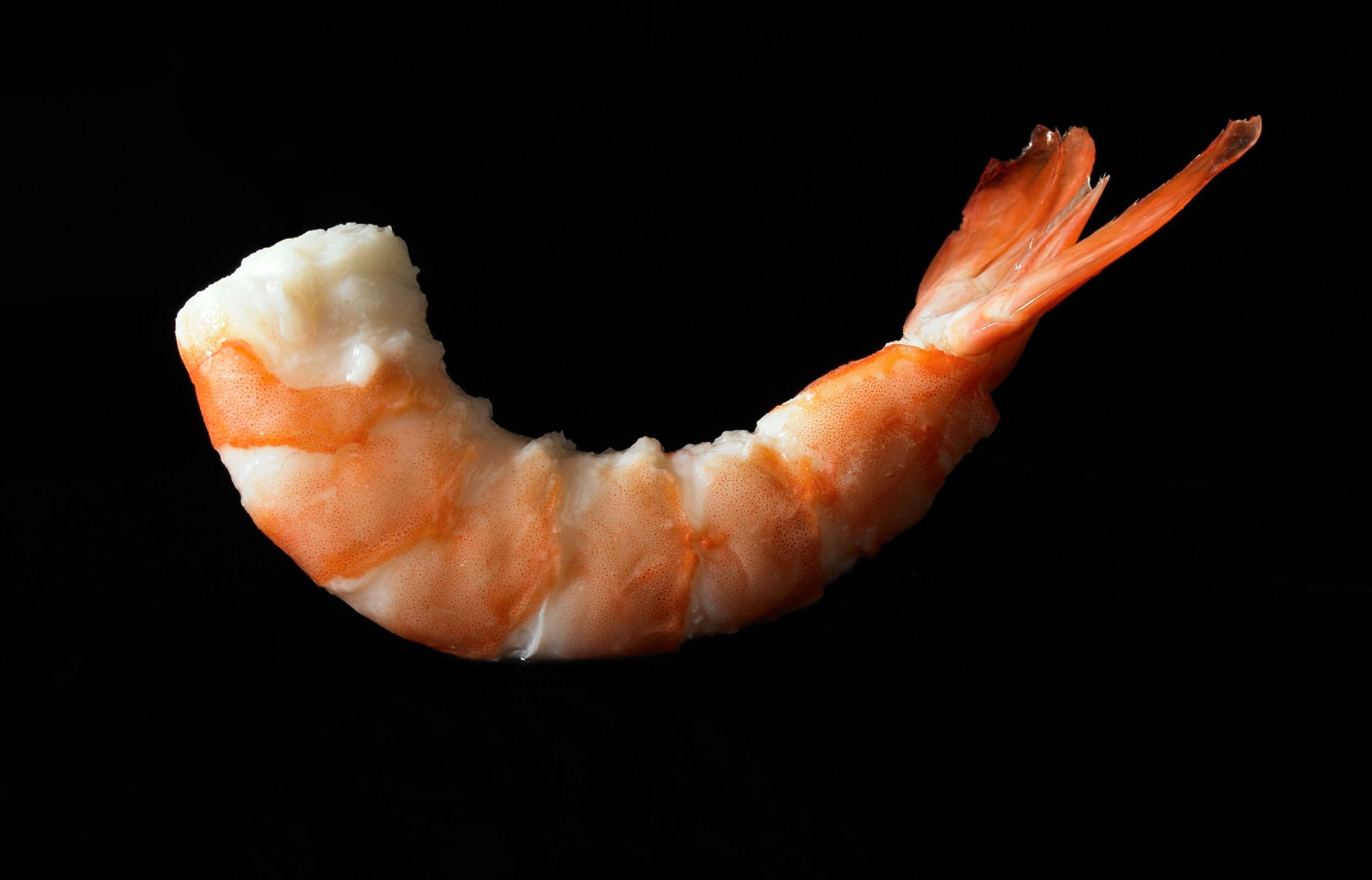 Prawn for Coleman's Marie Rose sauce