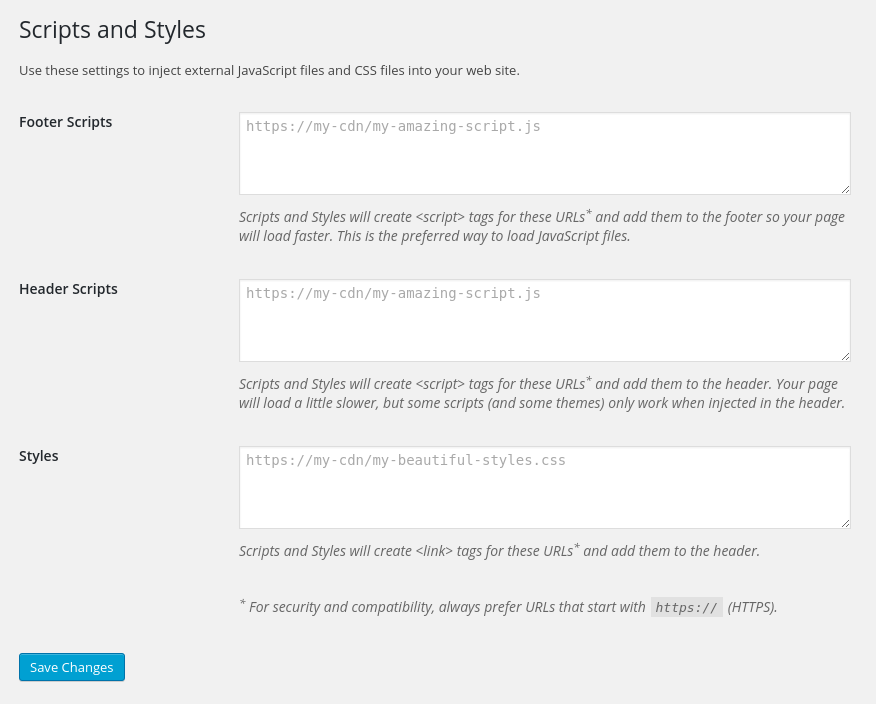 Scripts and Styles Admin Settings