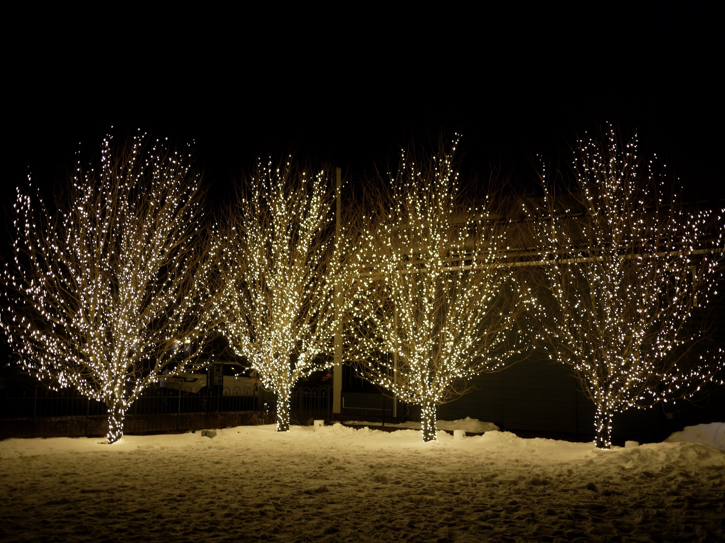 Aspen Christmas Light Installation