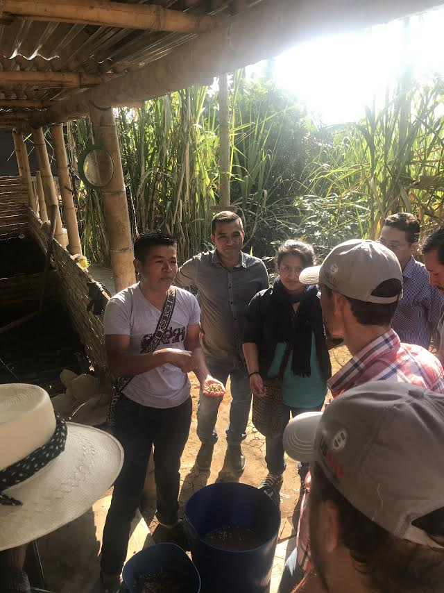 Coffee producer Jesus, who received support and technical training from the indigenous rights focused CENCOIC, displaying his recently harvested beans to our group.