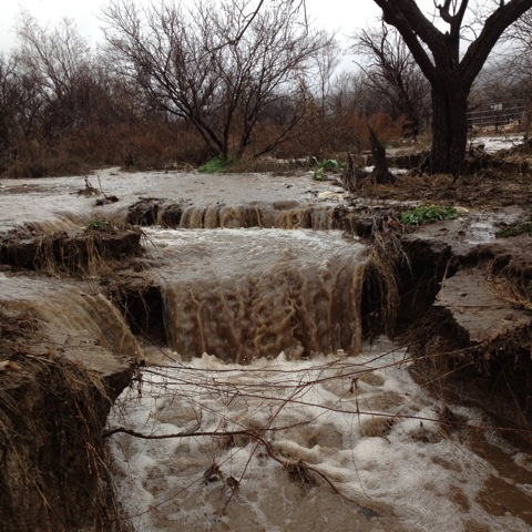 Northern end of wash, flowing south.