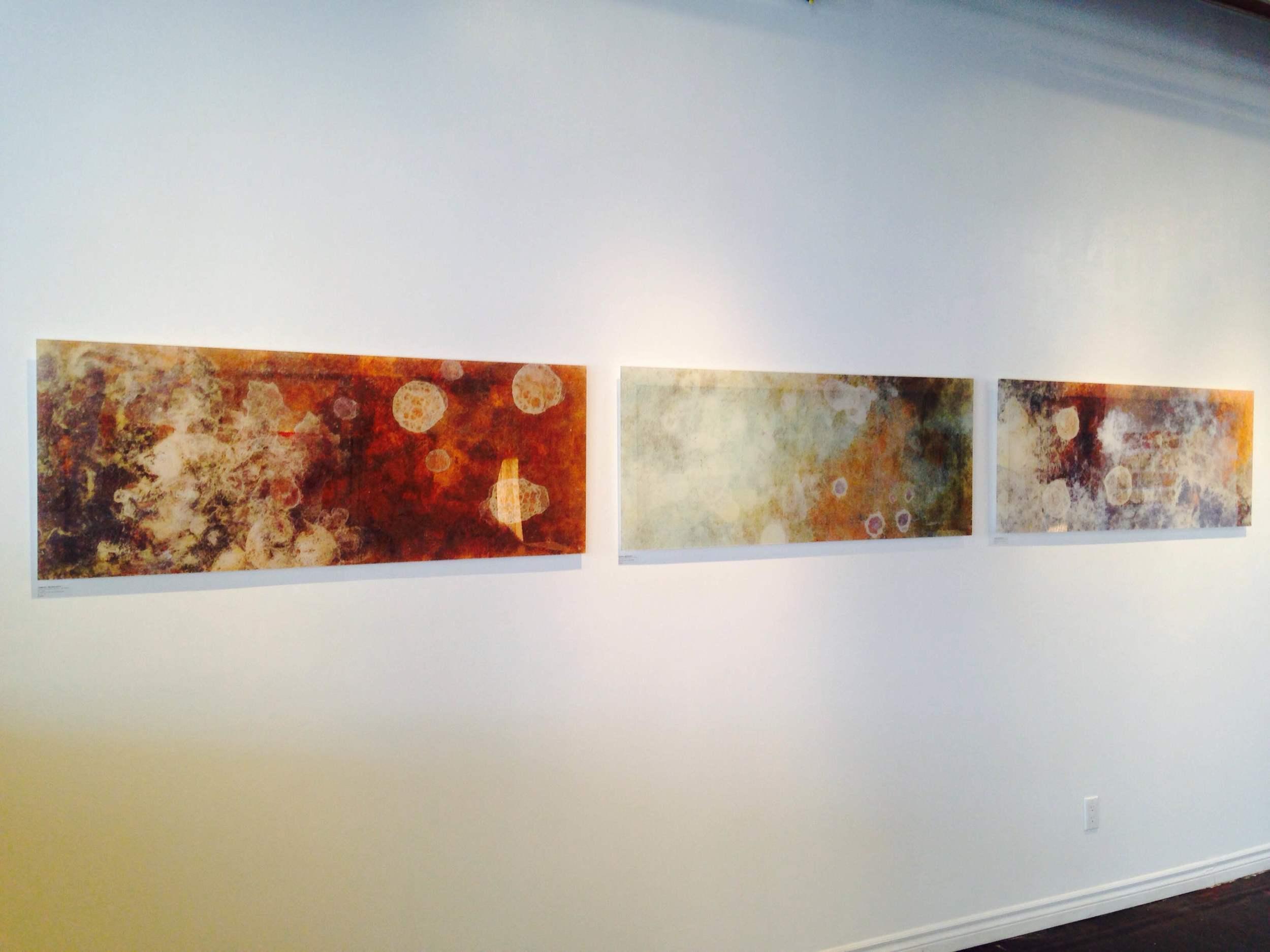 Works by Jasmine Mujkanovic