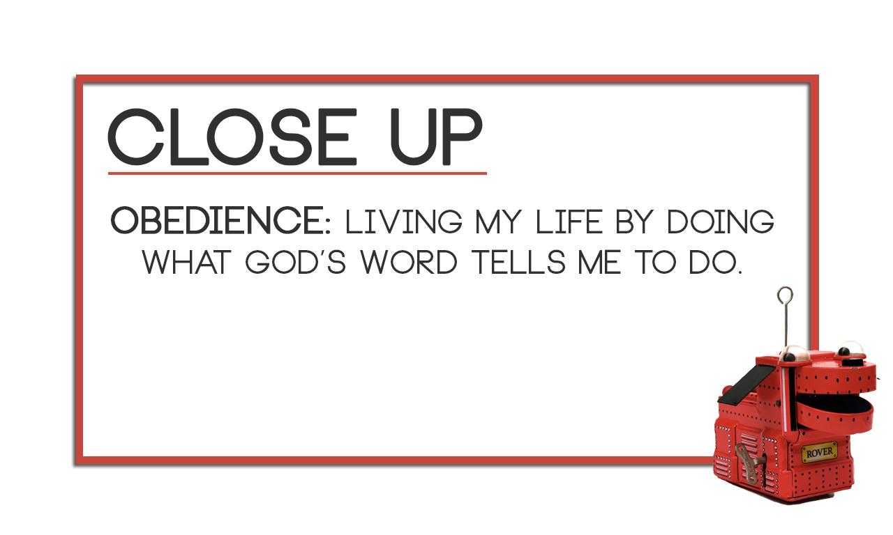 Obedience_CloseUp.jpg