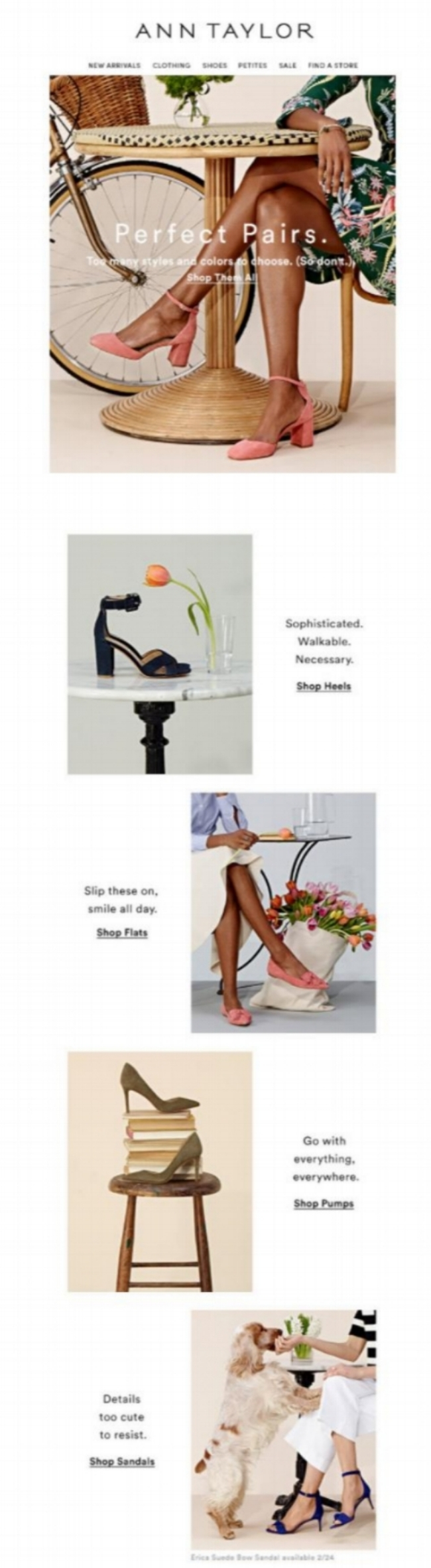 Ann Taylor- Two Words- New Shoes - Milled.jpg