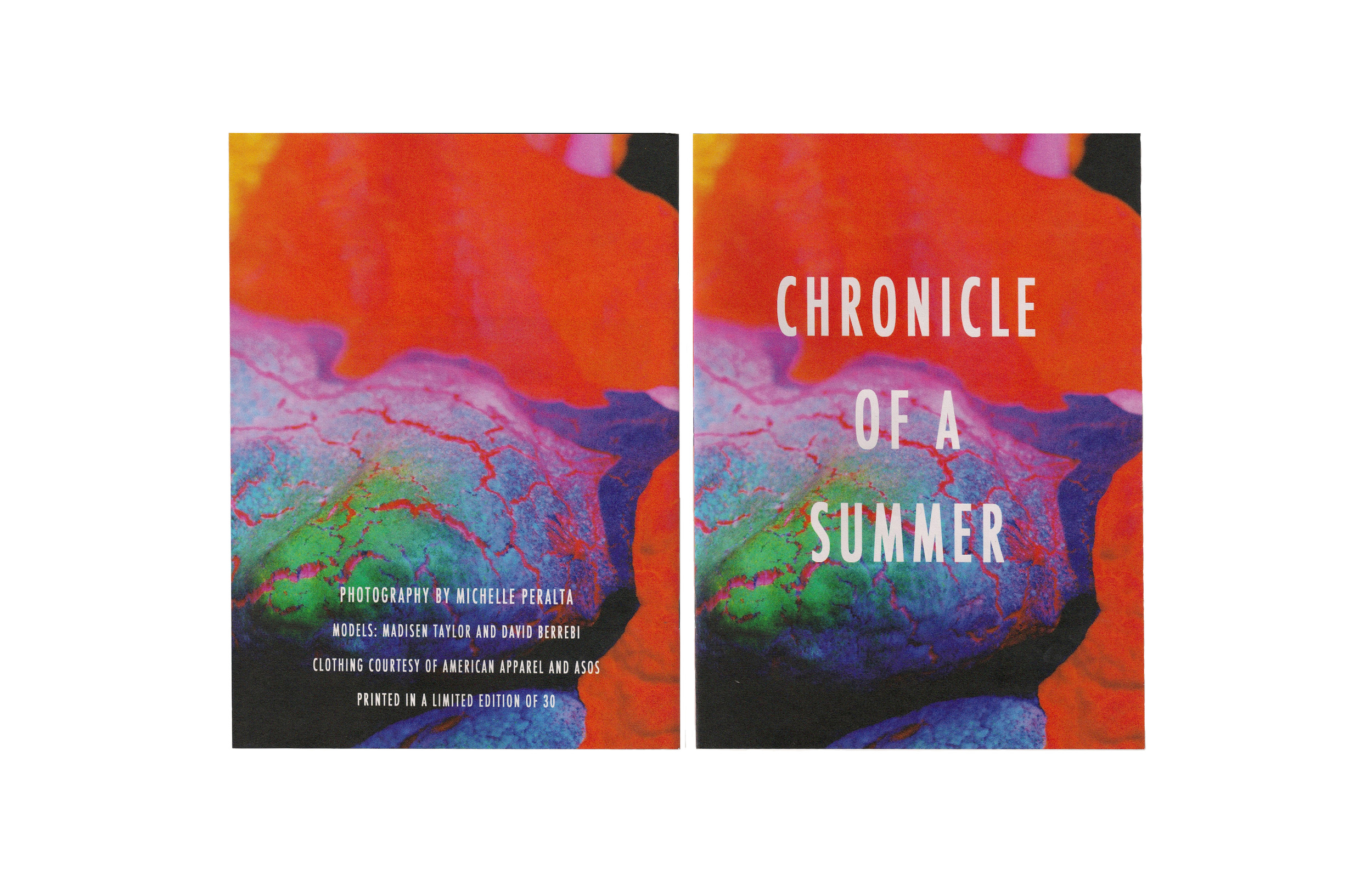 "Chronicle of a Summer    7 "" x 9.625 "" Newsprint booklet  32 Pages  Staple bound  Printed in a limited edition of 30"