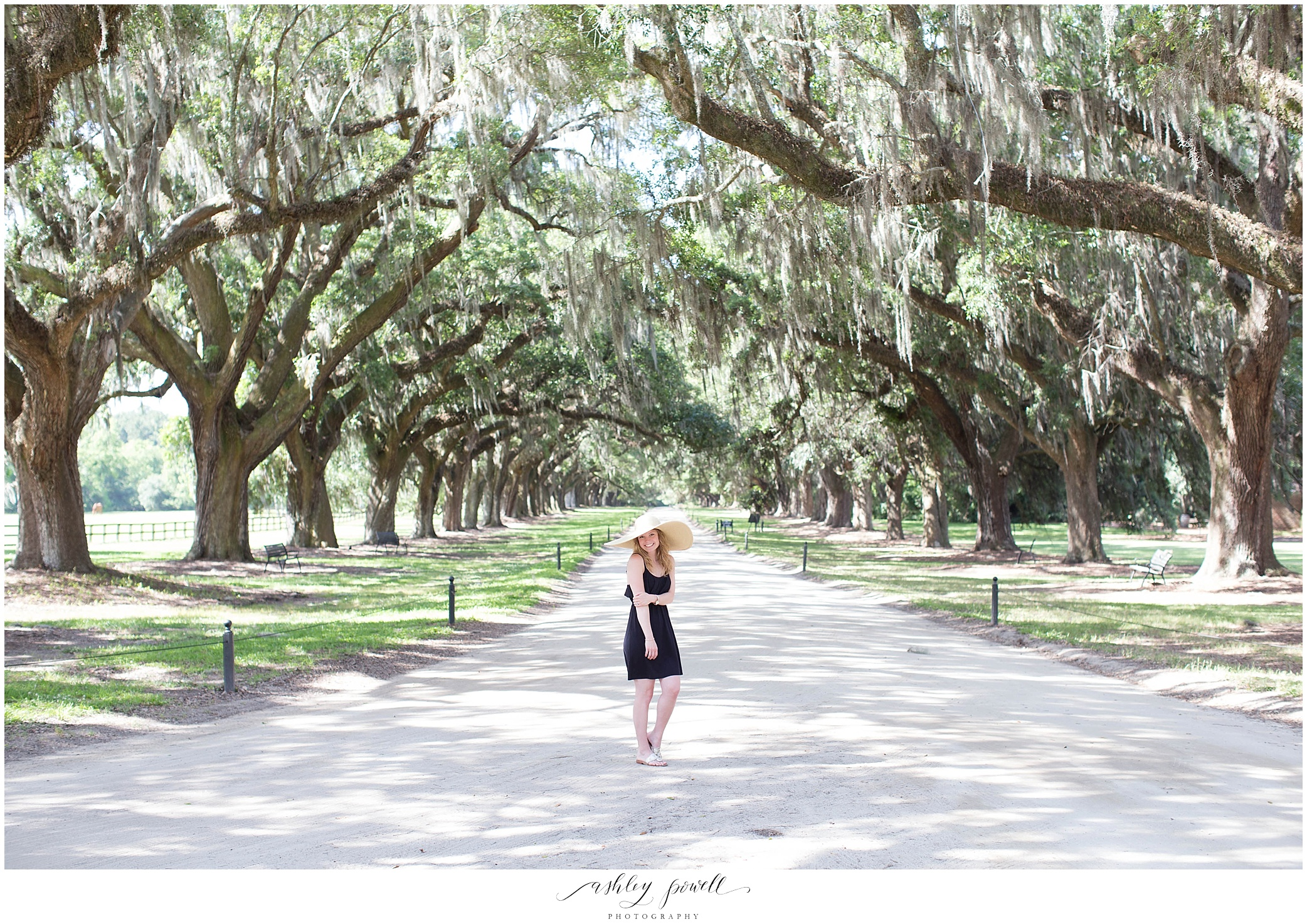 Boone Hall Plantation | Charleston, SC | Ashley Powell Photography