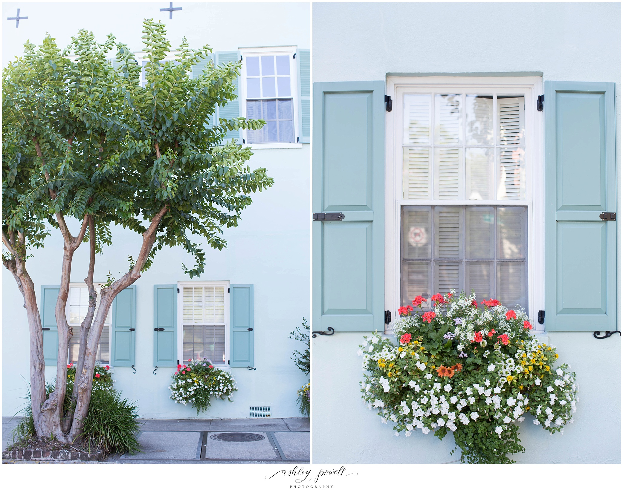 Rainbow Row | Charleston, SC|  Ashley Powell Photography