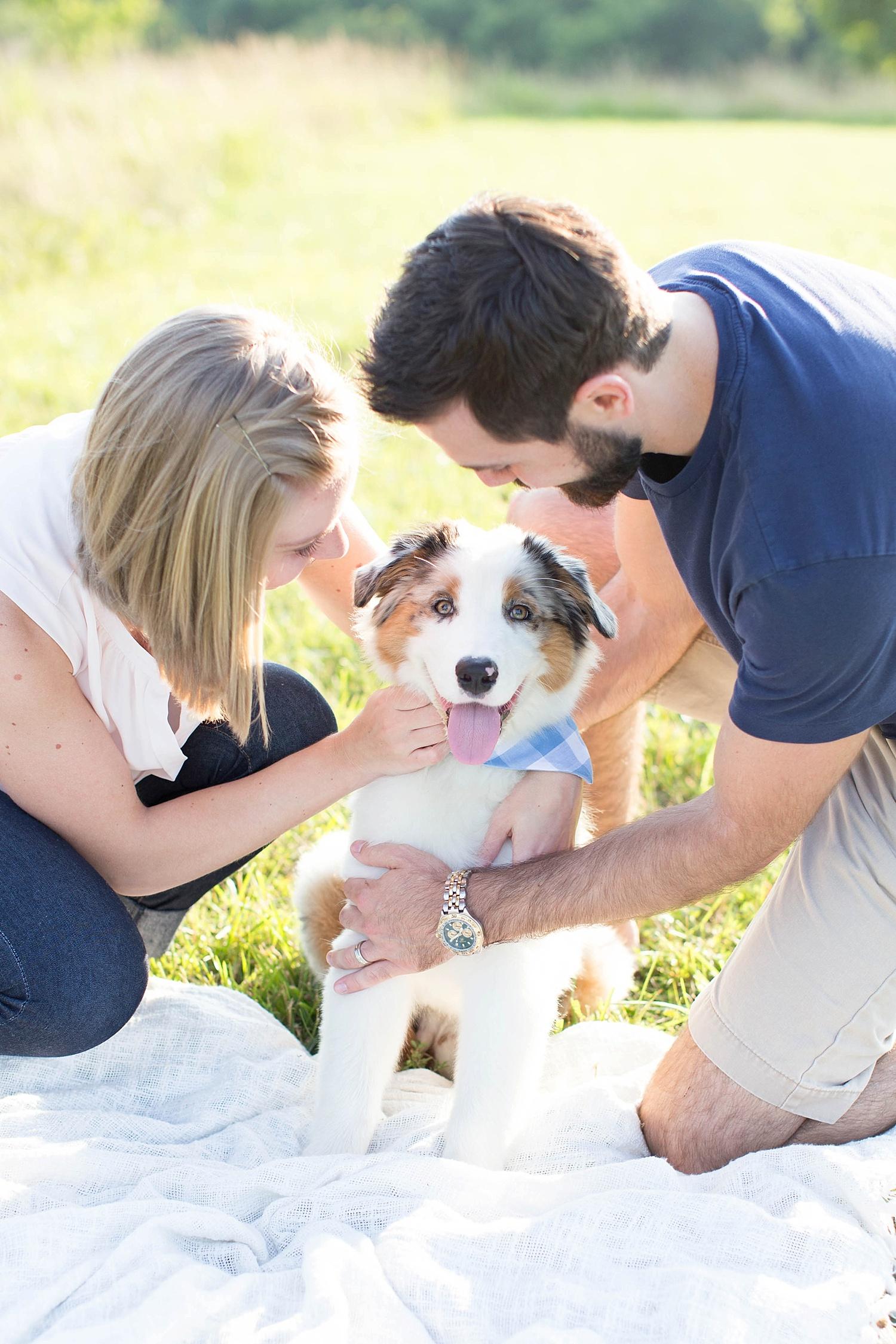 New Puppy Session   Ashley Powell Photography   Roanoke, VA
