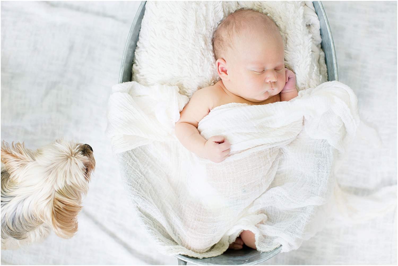 Ashley Powell Photography Newborn Gallery_0008.jpg