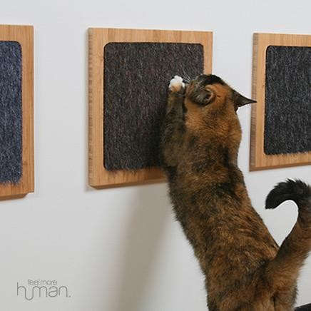 Cat Scratch Pad from Houzz, happy kitteh not included.