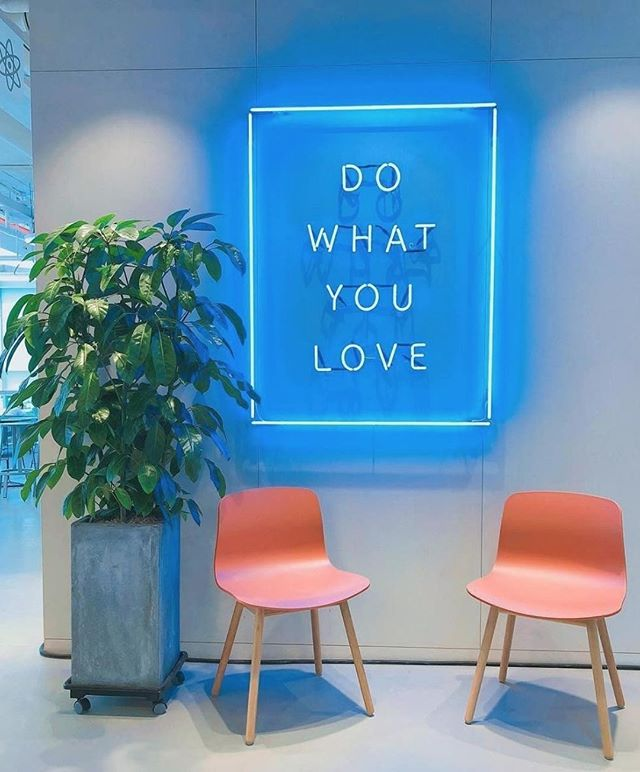 How do you feel about light up signs in your home? They sure do add a little ~spice~ to life. Checkout @ampedanco for more light up home décor pieces AND checkout US for how to get them on your wall in a jiffy! • • • • #dowhatyoulove #lovelife #interiordesign #unique #style #plantdecor #homedecor #pinterest #design #interiordecor #relaxation #architecture #interiors #designconcept #concept #art #focus #highquality