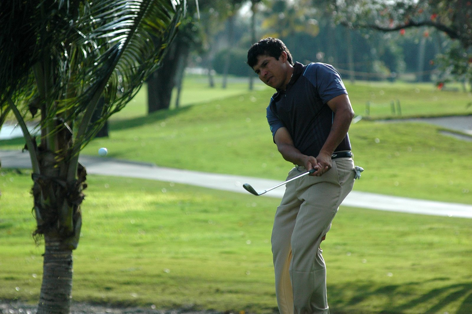 PGA Tour player, Andres Romero, has a lot of motor ability.