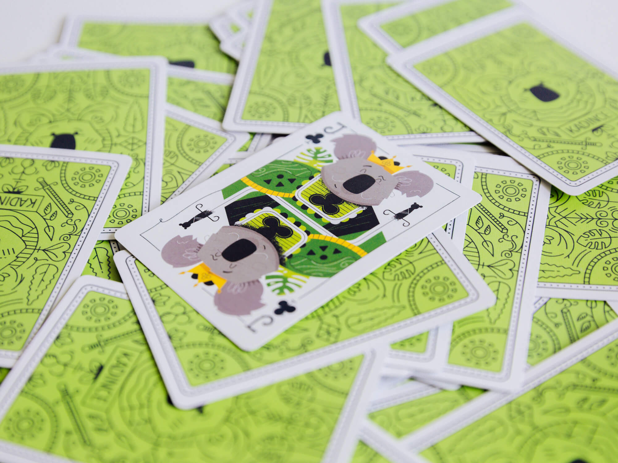 kirk.wallace_bonehaus_koala.cards-jacksolo 2.jpg