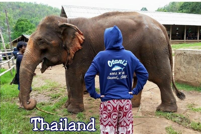 thailand.jpeg