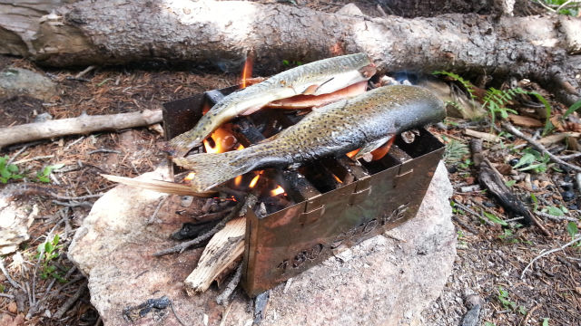 180_STOVE_Trout.jpg