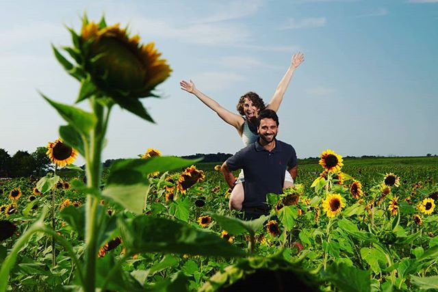Sunflowers everywhere, And love is in the air!  #burnsidefarms #burnsidefarmssunflowers #virginiaweddingphotographer #virginiaengagementphotographer #interfits1 #sunflowerfield #sunflowers #sunflowers🌻
