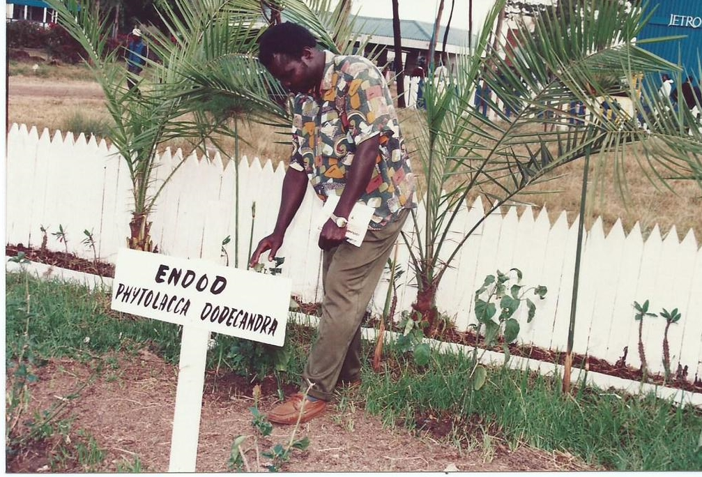 C. Ochieng, GIDE Researcher in  Field Work: A Project on Impact Evaluation of Endod Plant ( Phytolocca dodecandra ) for Controlling Malaria and Bilharzia Transmitting Mosquitoes and Snails Respectively in Africa (1992 - 1994)