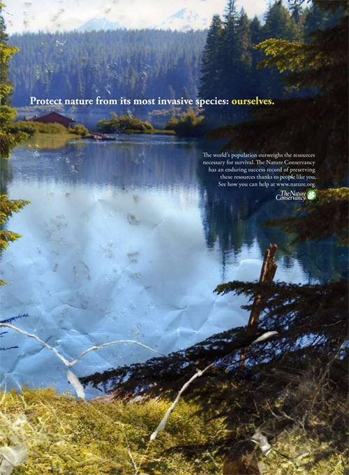 Nature-Conserve3.jpg