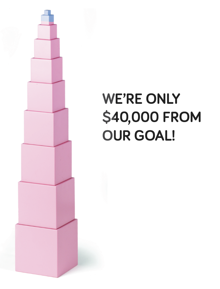 40000 from our goal.png