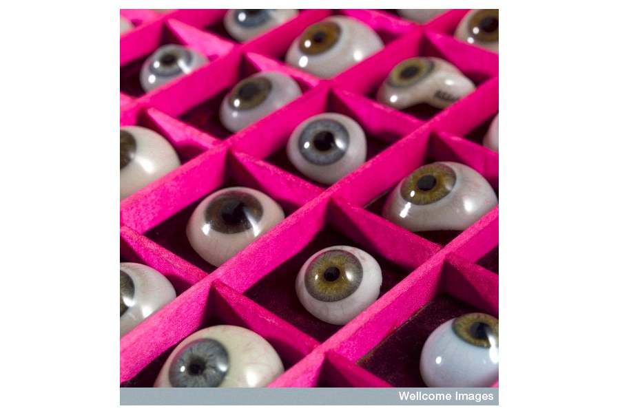 A case filled with a selection of glass eyes.