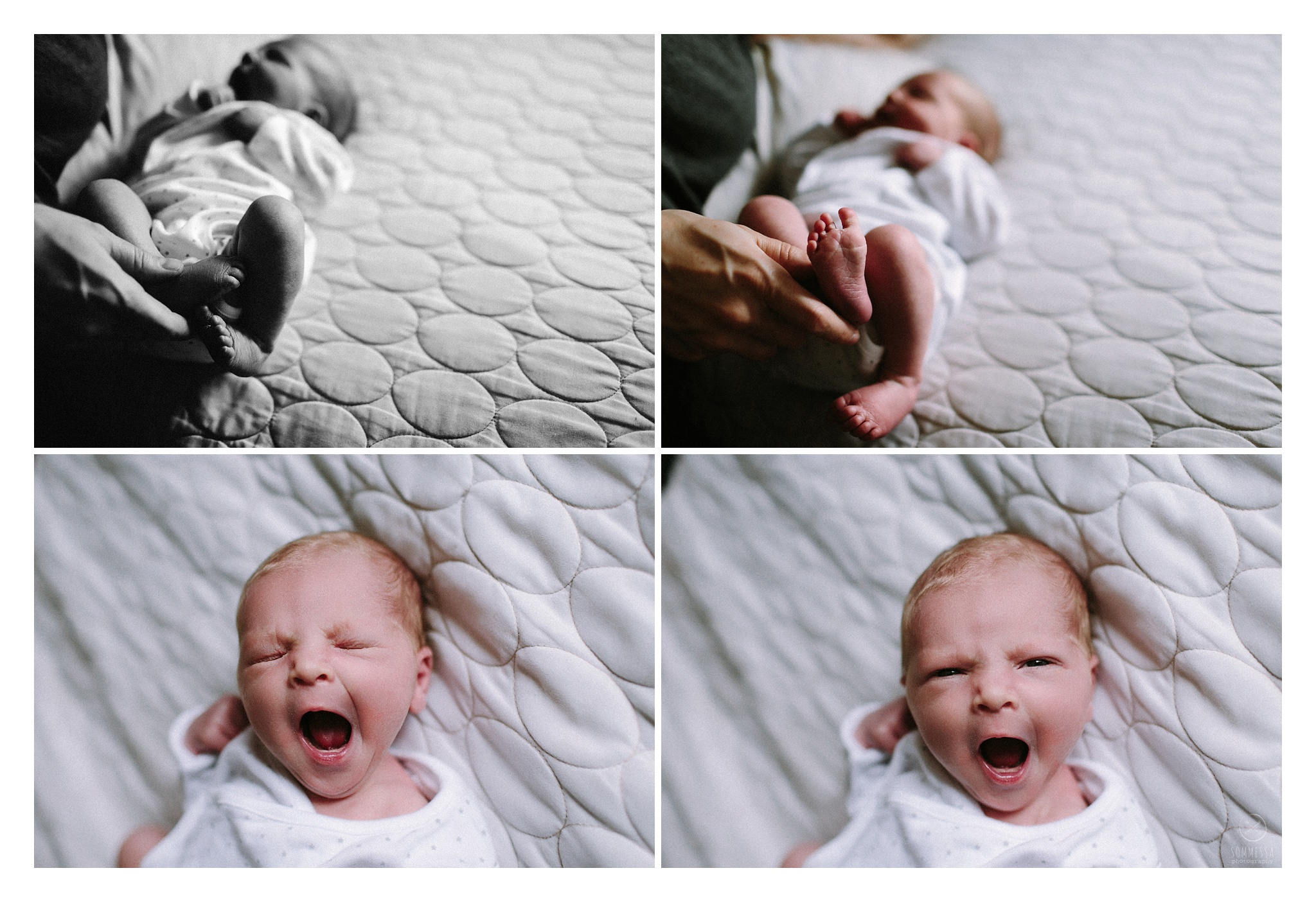 Newborn Photography Sommessa Portland Oregon_0764.jpg