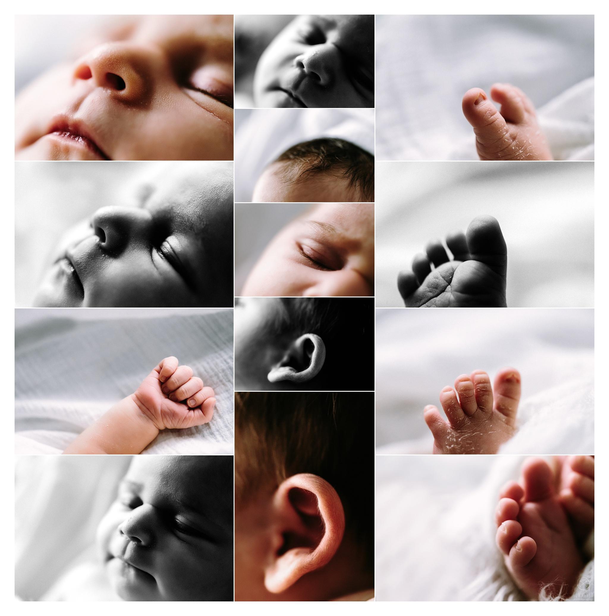 Newborn Photography Portland Oregon Sommessa_0978.jpg