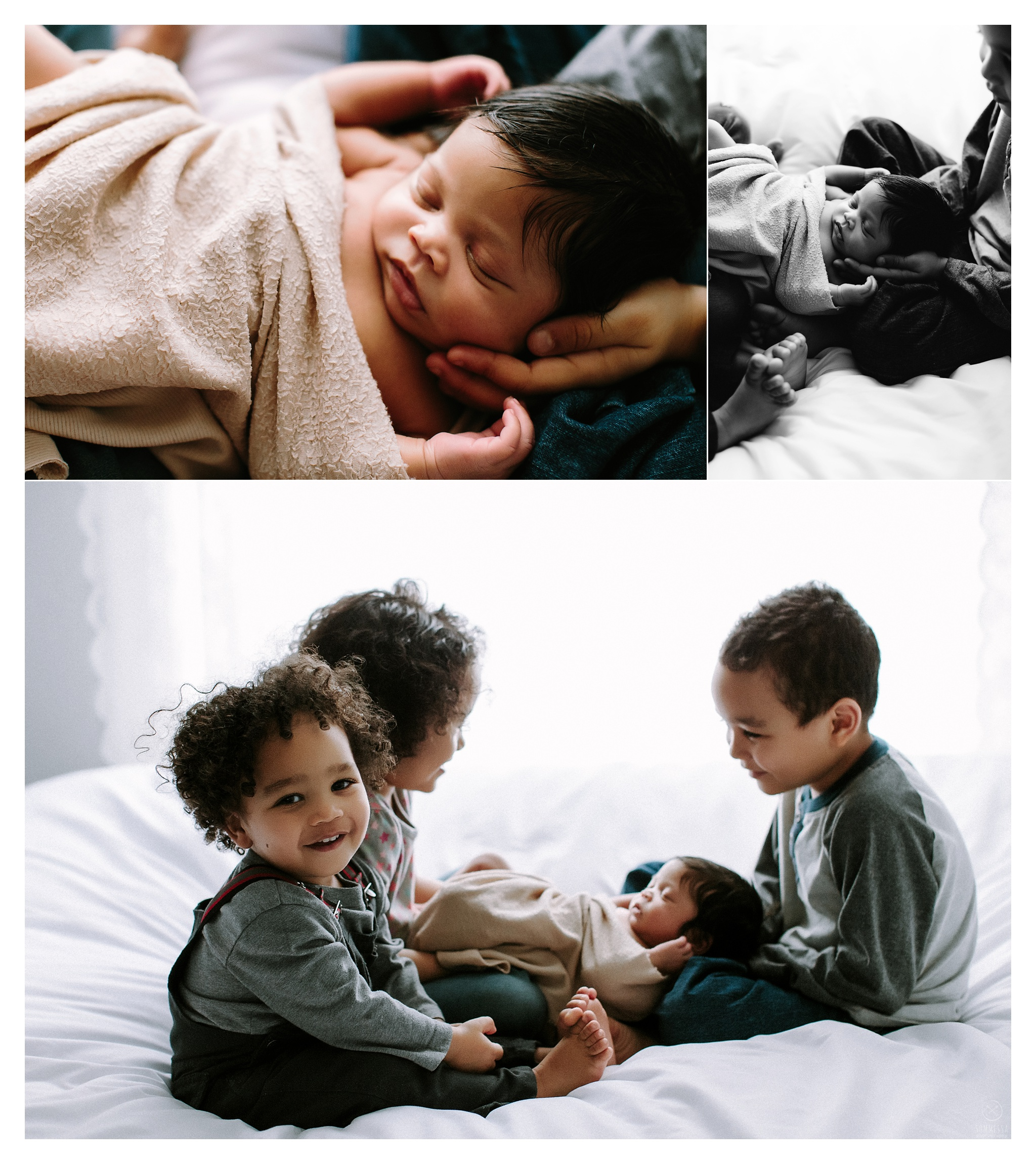 Newborn Photography Portland Oregon Sommessa_1022.jpg