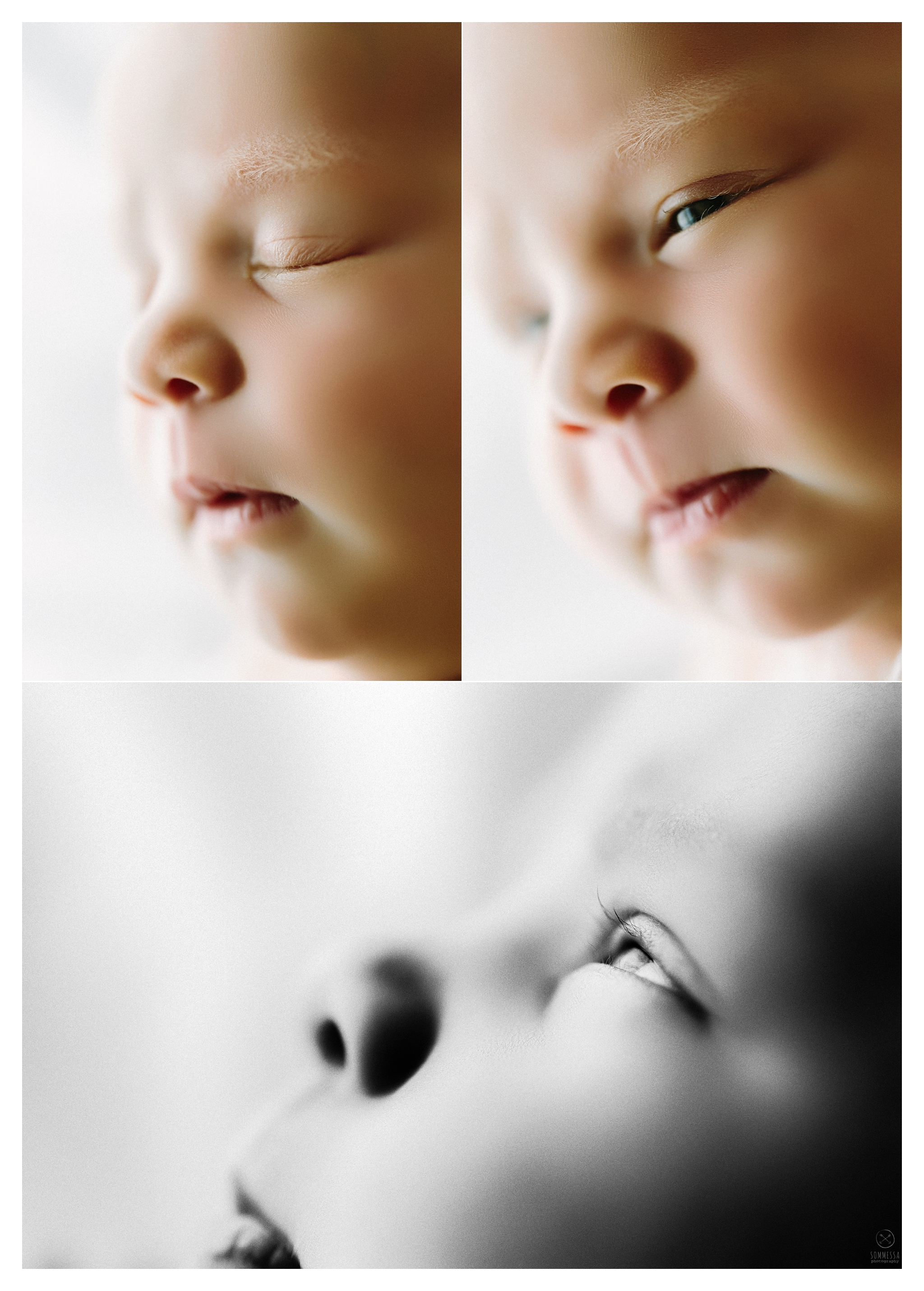 Newborn Photography Portland Oregon Sommessa_1143.jpg