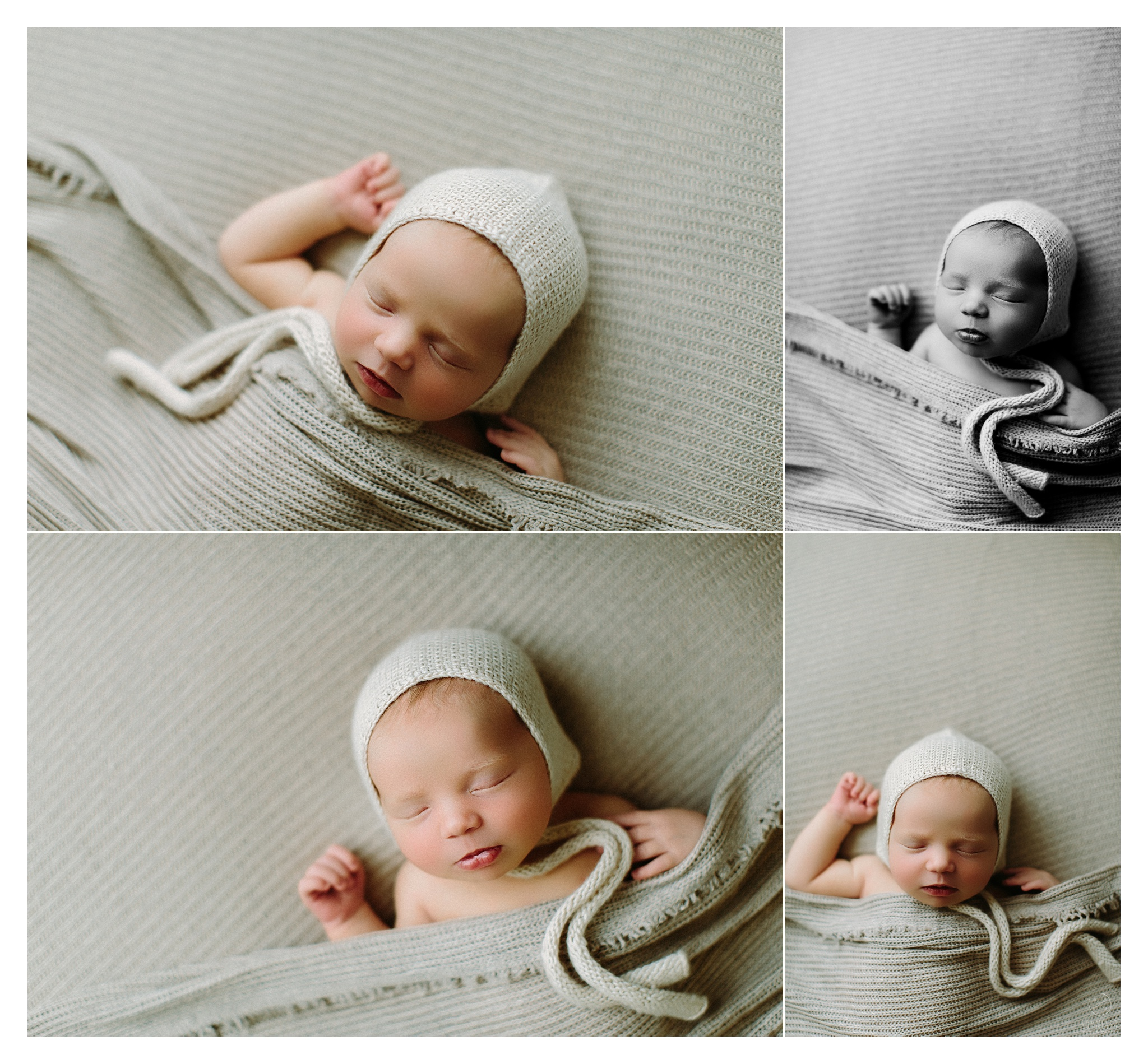 Newborn Photography Portland Oregon Sommessa_1152.jpg