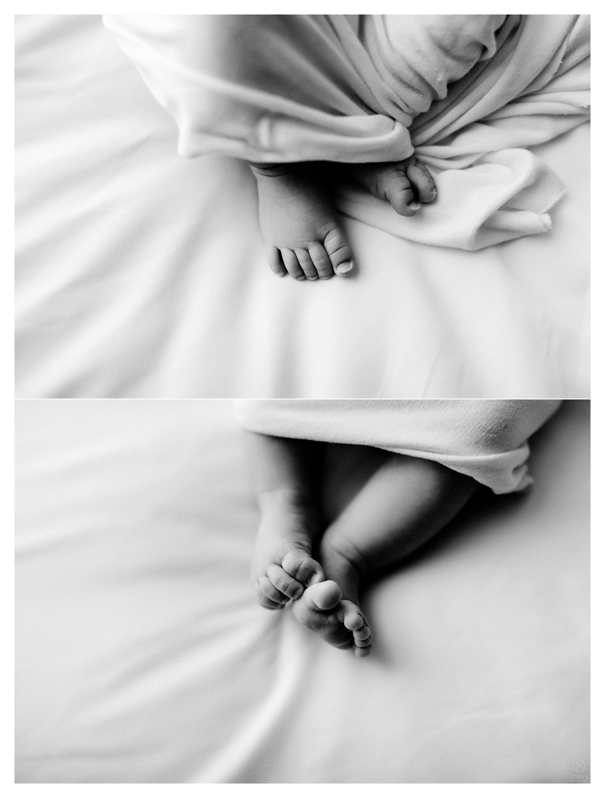 Newborn Photography Portland Oregon Sommessa_1161.jpg