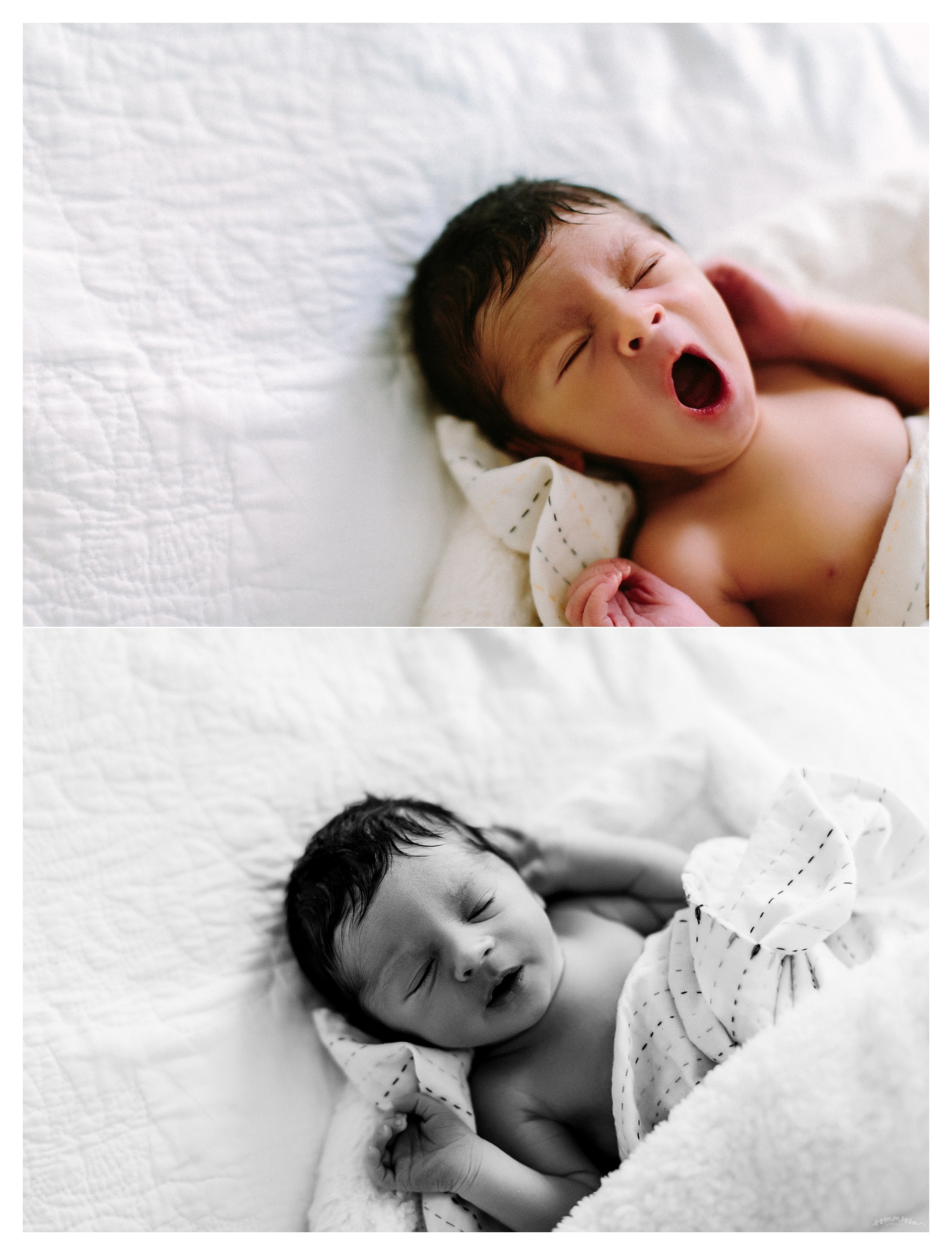 Newborn Photography Portland Oregon Sommessa_1373.jpg