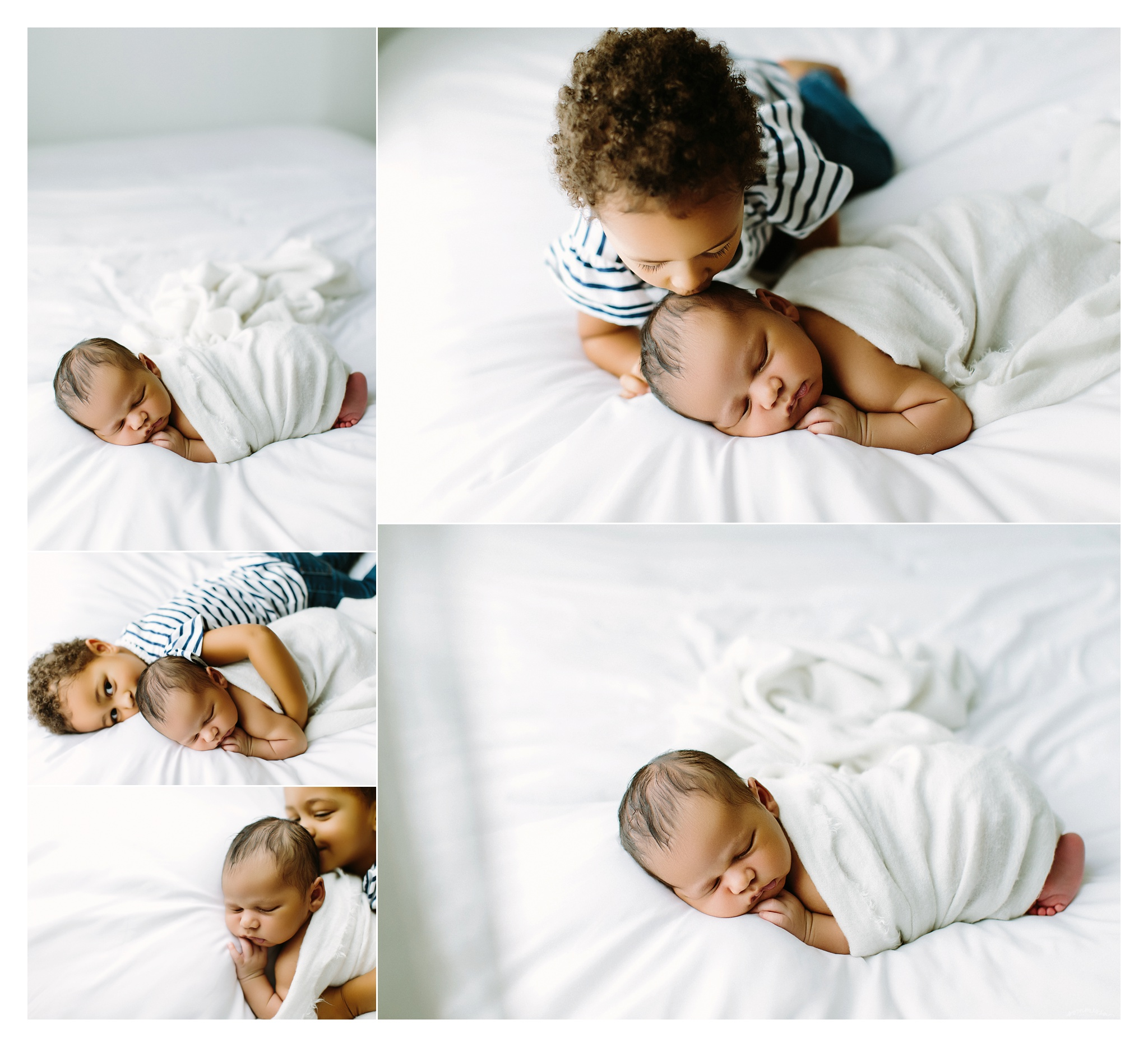 Newborn Photography Portland Oregon Sommessa_1443.jpg