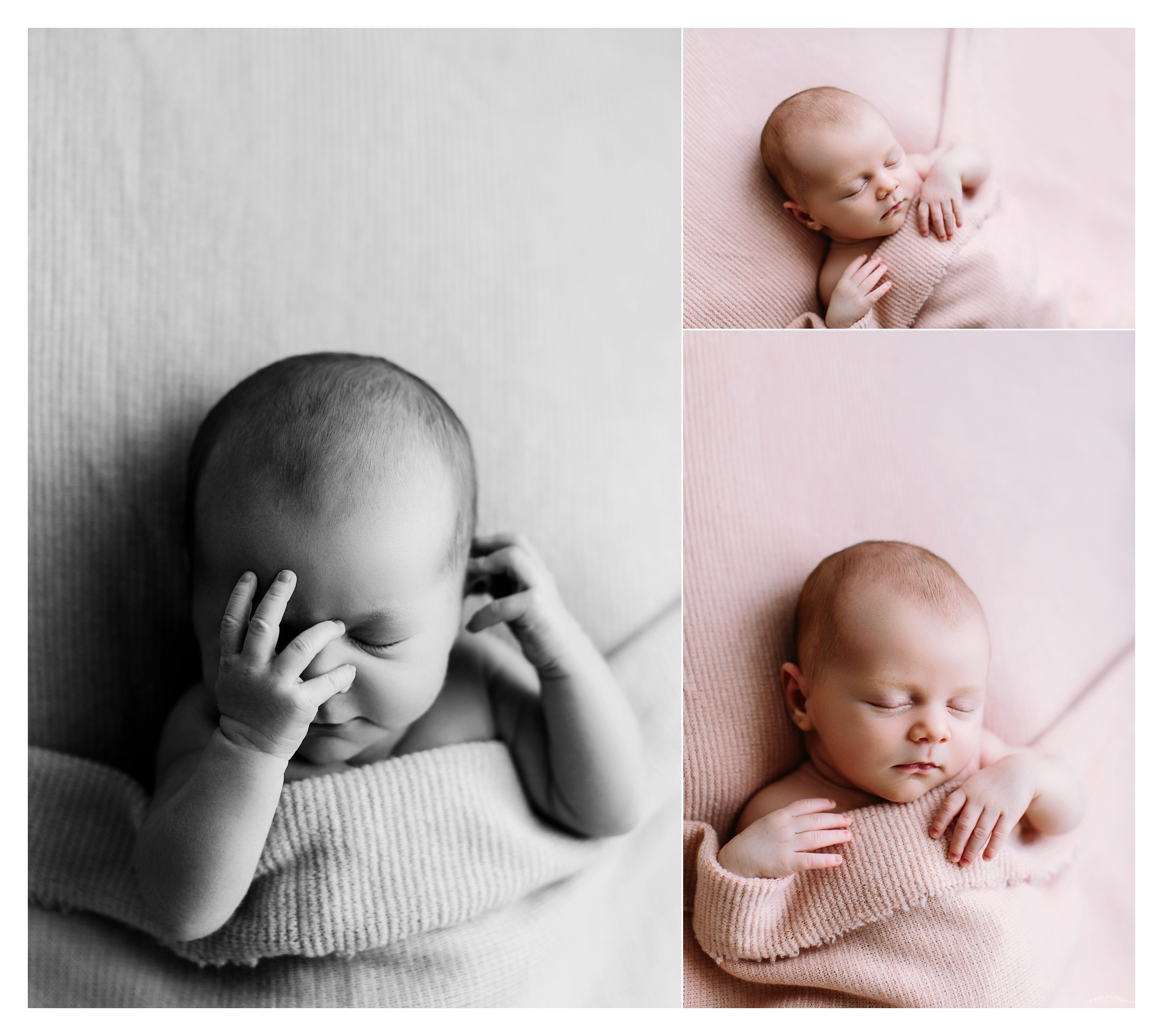 Newborn Photography Portland Oregon Sommessa_1495.jpg