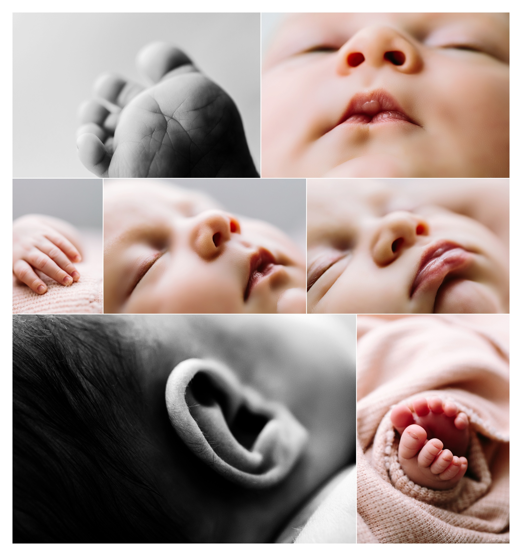 Newborn Photography Portland Oregon Sommessa_1494.jpg