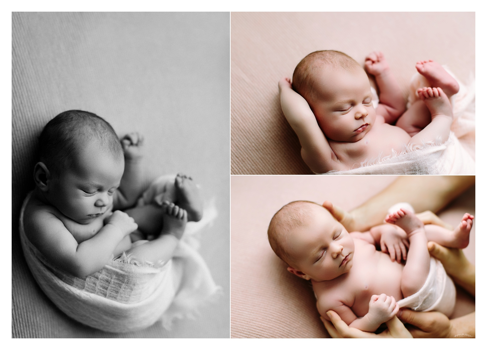 Newborn Photography Portland Oregon Sommessa_1499.jpg