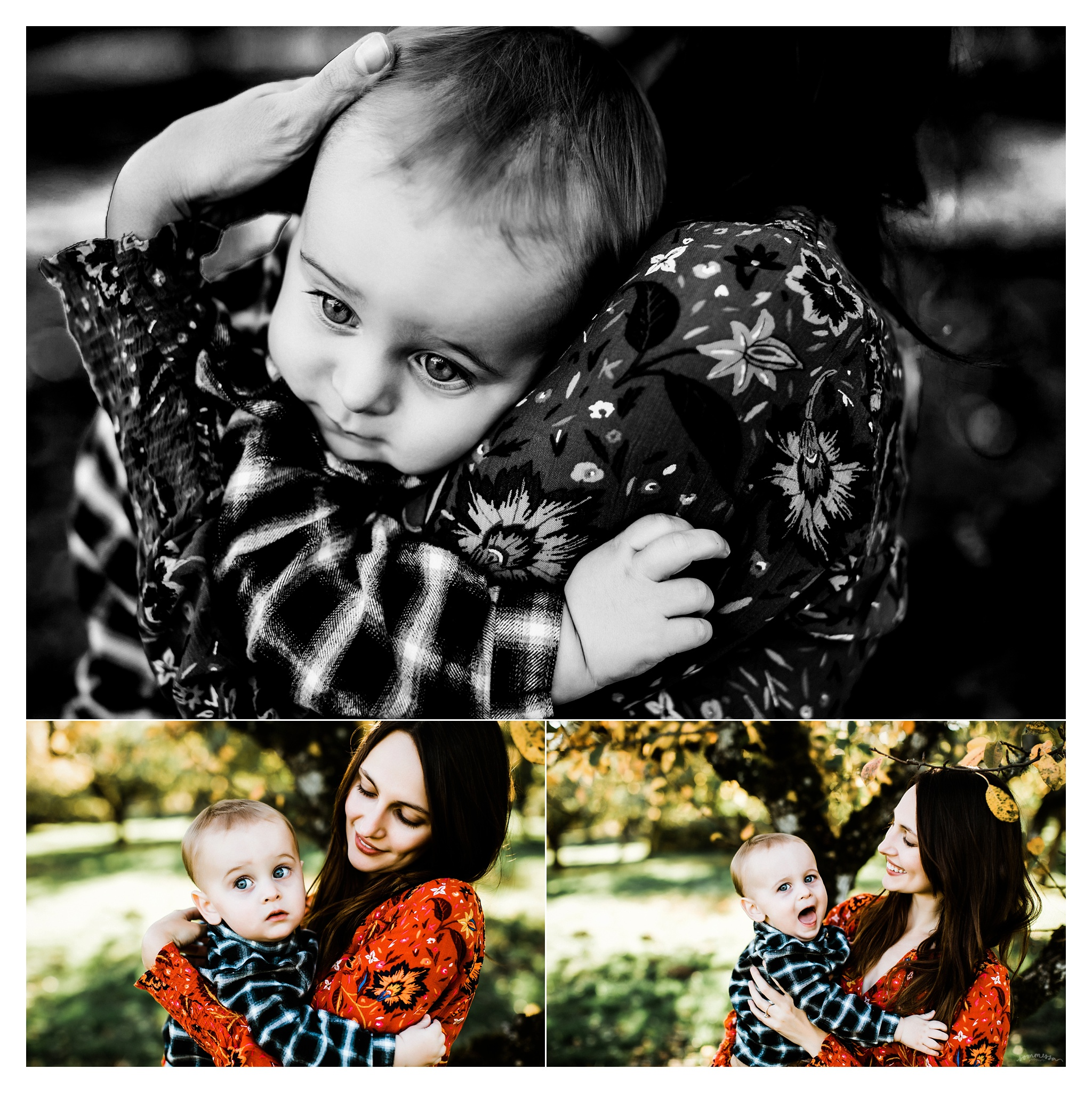 Family Photography Portland Oregon Sommessa_1504.jpg