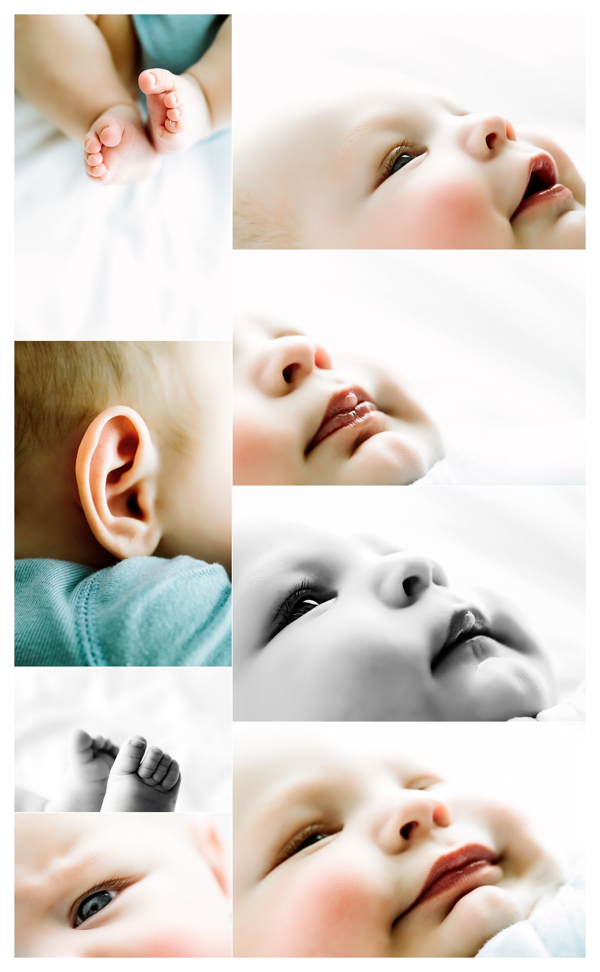 Baby Photography Portland Oregon Sommessa_1577.jpg