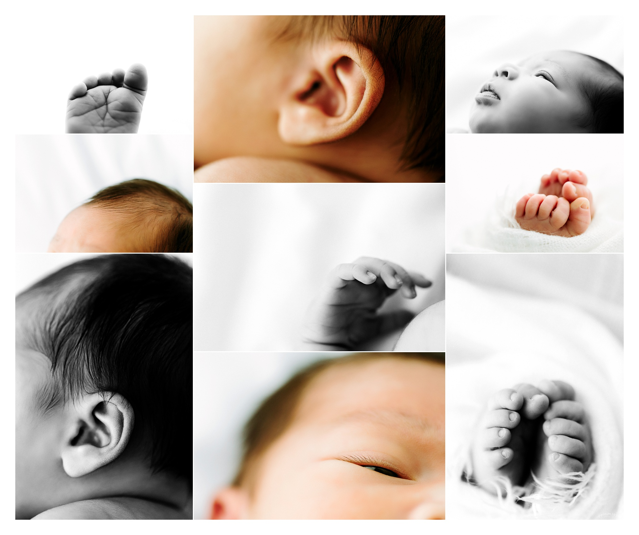 Newborn Photography Portland Oregon Sommessa_1693.jpg