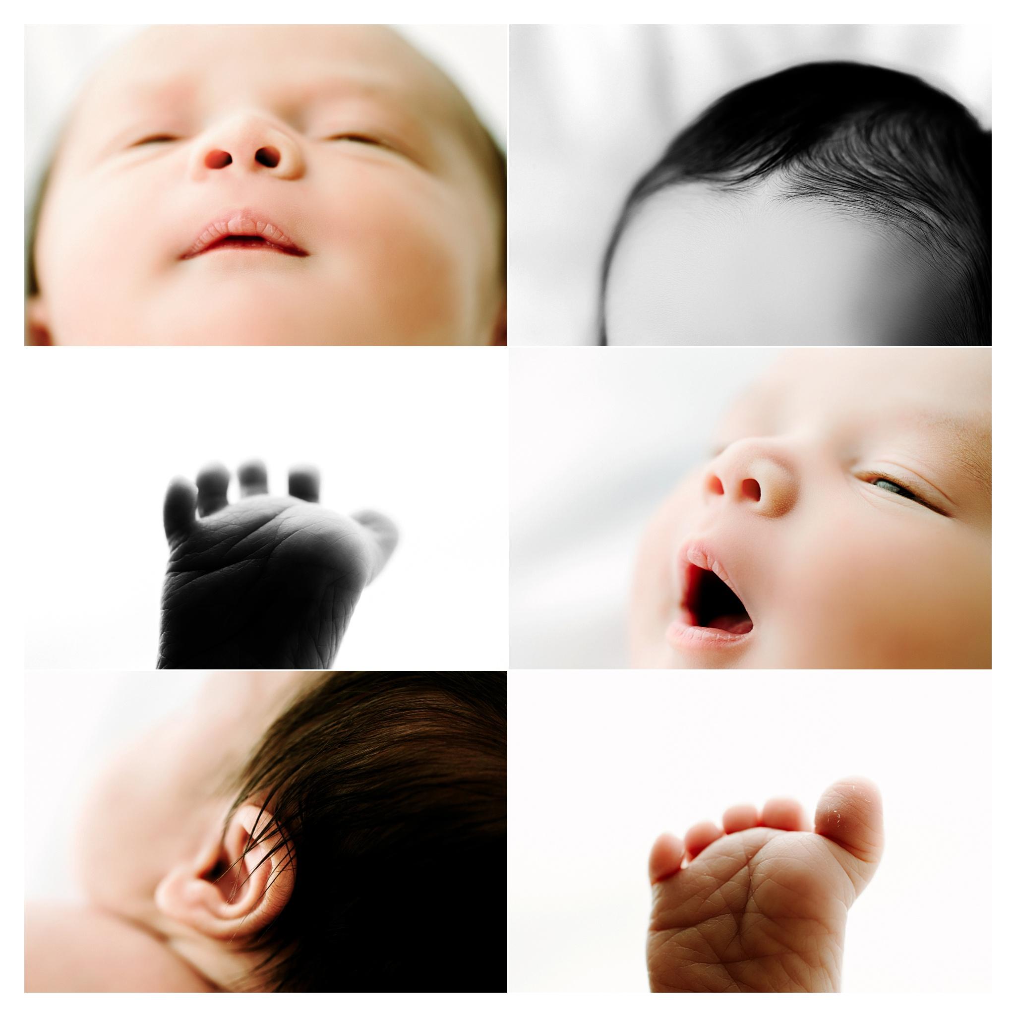 Newborn Baby Photography Portland Oregon Sommessa_1742.jpg