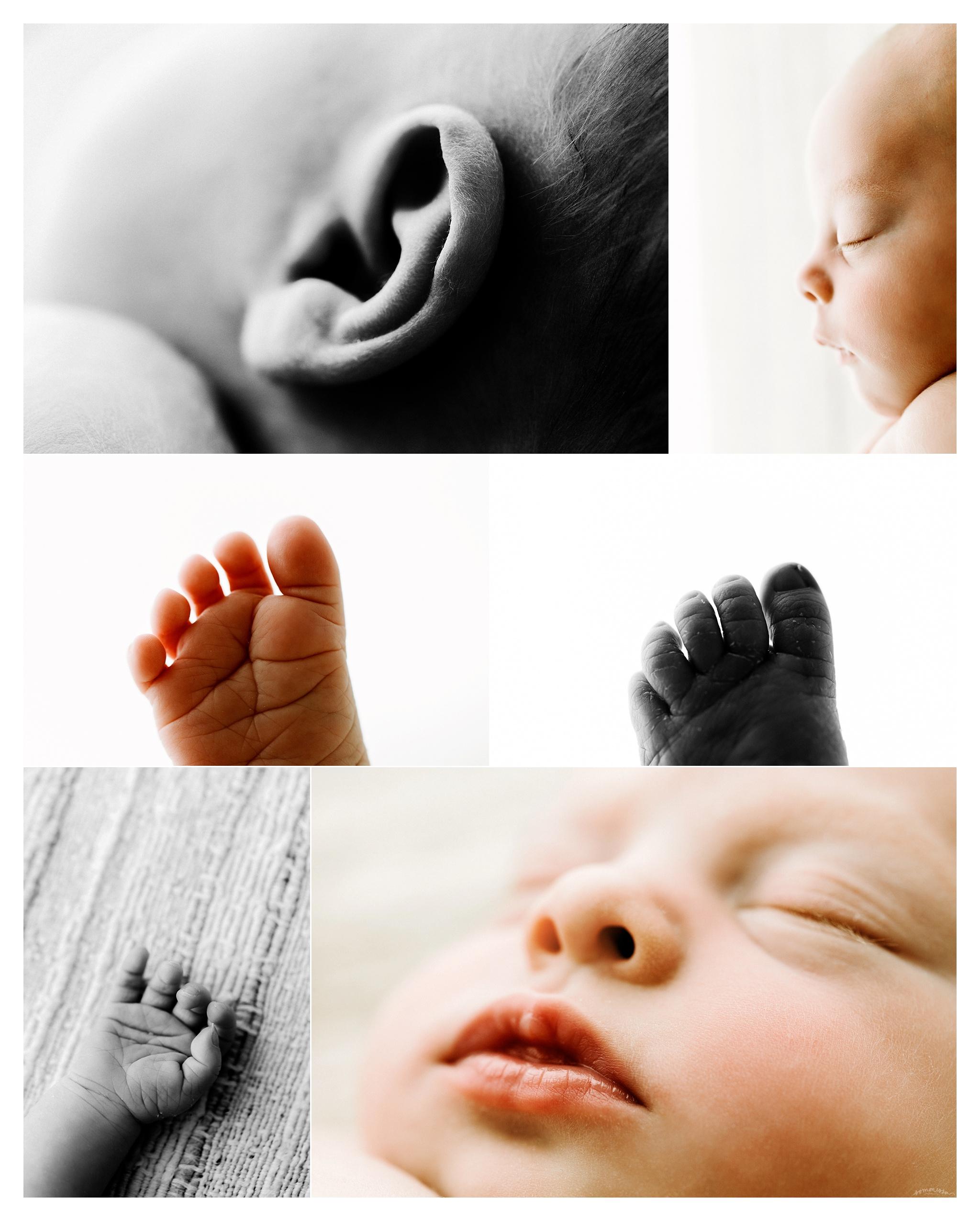 Newborn Baby Photography Portland Oregon Sommessa_2031.jpg